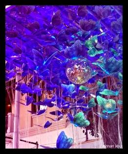 Finally, my favourite ! What really attracts me to this installation is the lovely colour and the effect of the lights on the disco ball which falls on these butterflies and brings their wings to life !!
